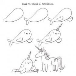 Drawn narwhal unicorn
