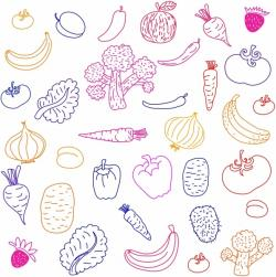 Drawn vegetable fruit and vegetable