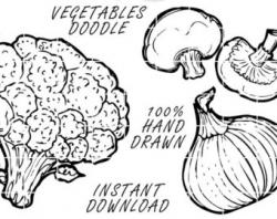 Drawn vegetables line art