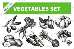 Drawn vegetables sketched