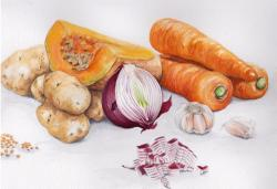 Drawn vegetables realistic