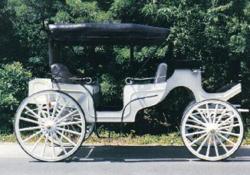 Drawn trolley fancy horse