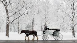 Drawn snowfall winter