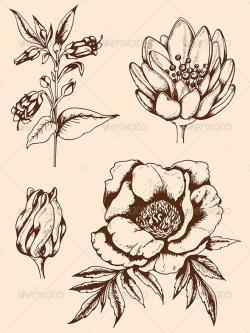 Drawn vintage flower