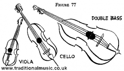 Drawn violin viola