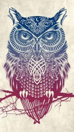Drawn wallpaper owl