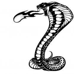 Cobra clipart drawn