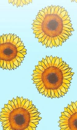 Drawn wallpaper sunflower