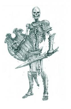 Drawn sleleton skeleton warrior