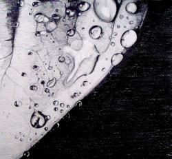 Drawn waterdrop leave