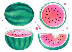Drawn watermelon i ve