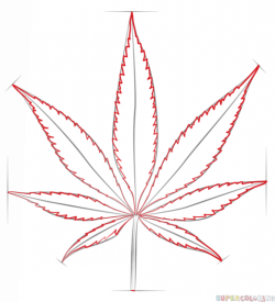 Drawn weed leaf outline