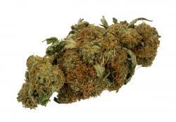 Drawn weed prescription