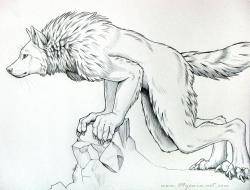 Drawn wolfman fluffy