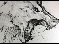 Drawn werewolf