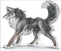 Drawn werewolf epic