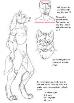 Drawn furry easy