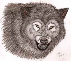 Drawn werewolf mad wolf