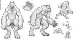 Drawn werewolf muscle