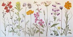 Drawn wildflower watercolor