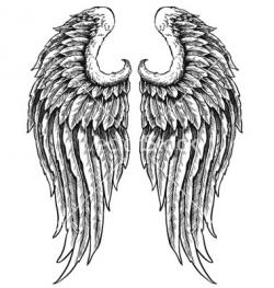 Drawn hand angel wings