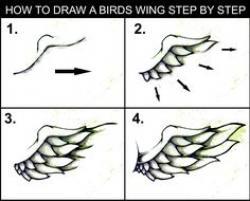 Drawn lollipop beginner step by step
