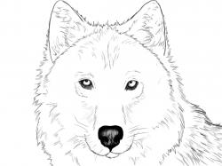 Drawn werewolf face