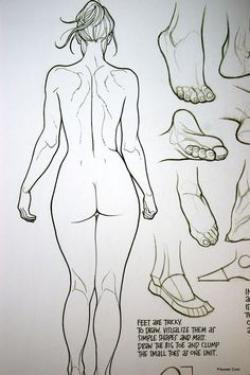 Drawn women beautiful woman body