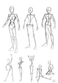 Drawn women female body anatomy