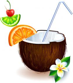 Drink clipart coconut shell