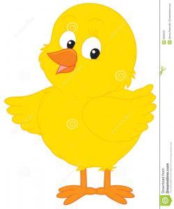 Chick clipart illustration