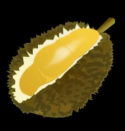 Durian clipart