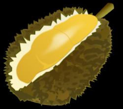 Durian clipart buah