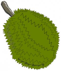Durian clipart jackfruit