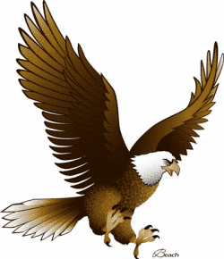 Animl clipart eagle