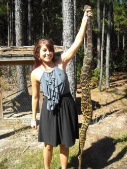 Eastern Diamondback Rattlesnake clipart giant