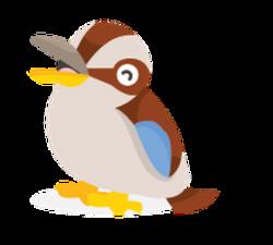 Kookaburra clipart cute
