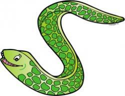Eels clipart green