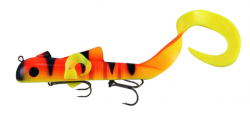 Eel clipart golden