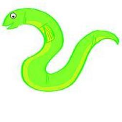 Eel clipart green