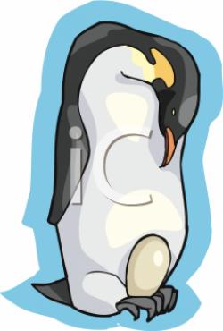 Emperor Penguin clipart penguin feet