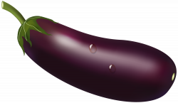 Coffee Plant clipart eggplant