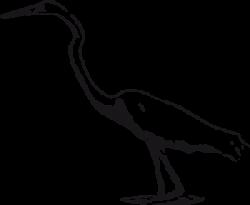 Heron clipart swamp animal
