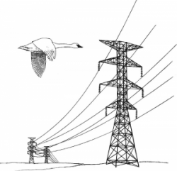 Electricity clipart electric power line