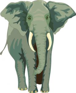 Tusk clipart african elephant