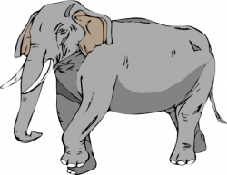 Asian Elephant clipart zoo animal