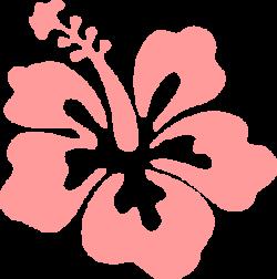 Coral clipart hibiscus
