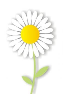 Gerbera clipart daisy chain