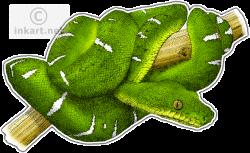 Boa clipart emerald