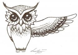 Drawn owlet real